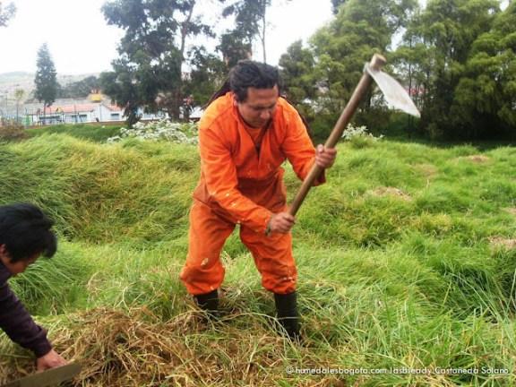 León trabajando en el Humedal La Libélula