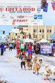 Iditarod2015_0179.JPG
