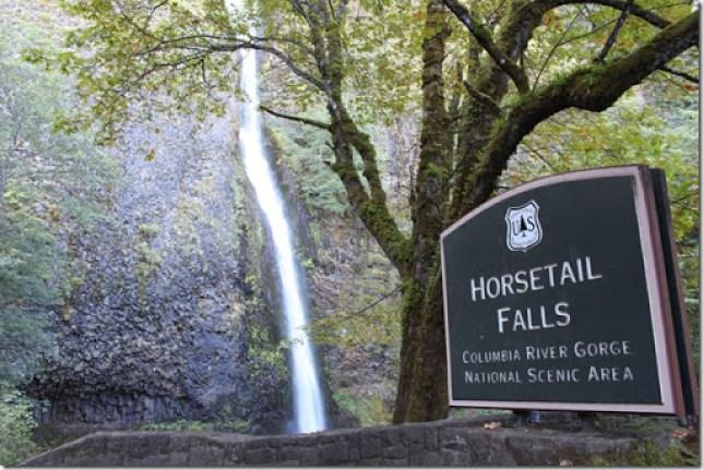 Domesticability Oregon Trip Mt. St Helens Haystack Rock Tidepools_-103