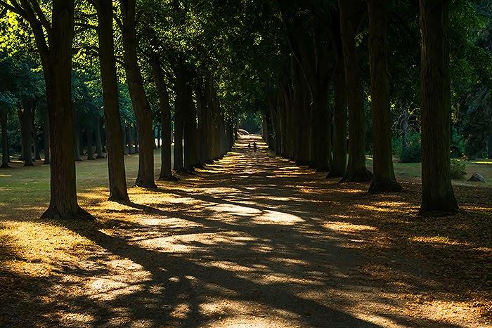 Potsdam37.jpg