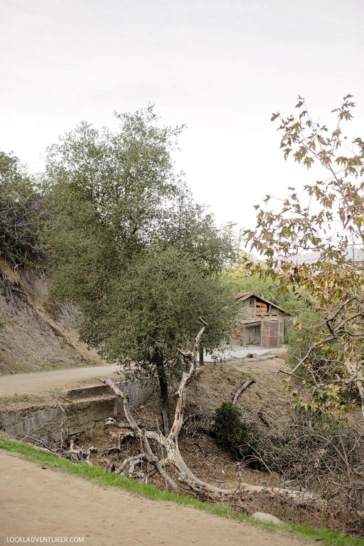 Old LA Zoo: Hidden Gems in Los Angeles.
