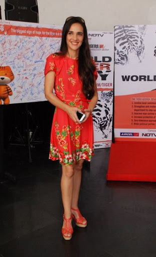 Tara Sharma Height