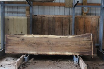 "571  Walnut -3 10/4 x 32"" x  26"" Wide x  10'  Long"