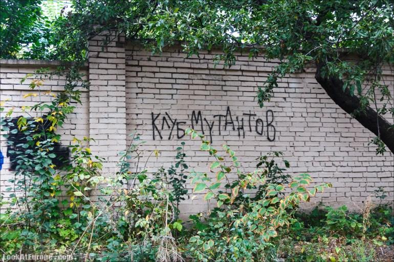 Уличные граффити городов Украины | Ukrainian street art | LookAtIsrael.com путешествует по Украине