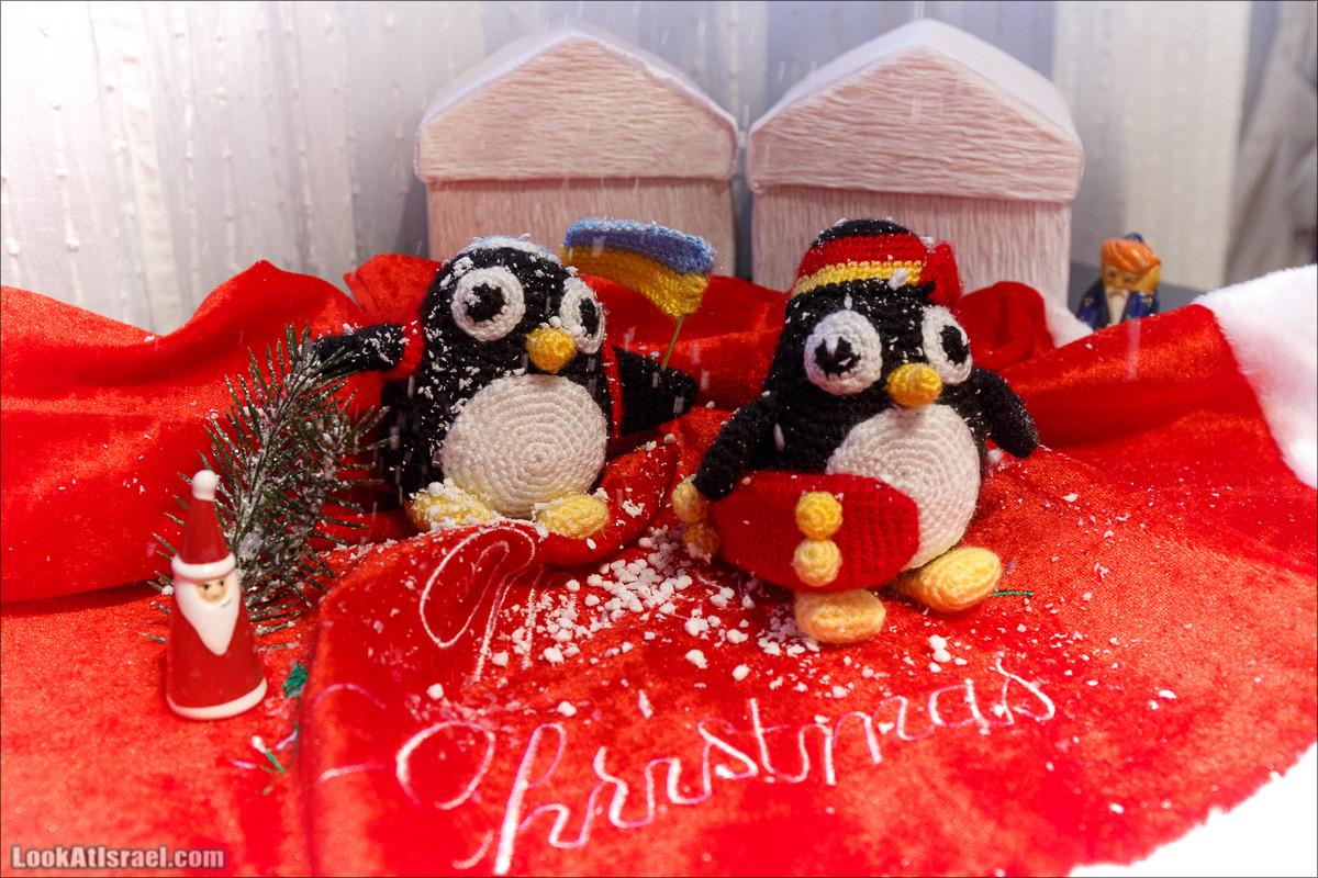 Пингвины Нового Года | LookAtIsrael.com - Фото путешествия по Израилю