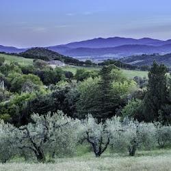 Satguru-Sirio-spring-retreat-2017-meditation-satsang-Sant-Bani-Ashram-Italy18.jpg