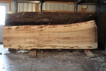 "575  Ambrosia Maple -6 12/4x 47"" x 35"" Wide x  12'  Long"