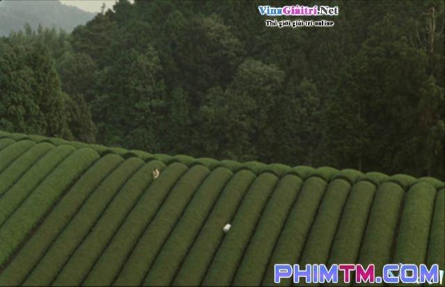 Xem Phim Khu Rừng Tang Tóc - The Mourning Forest - phimtm.com - Ảnh 1