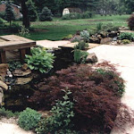 images-Landscape Design and Installation-lnd_dsn_15.jpg