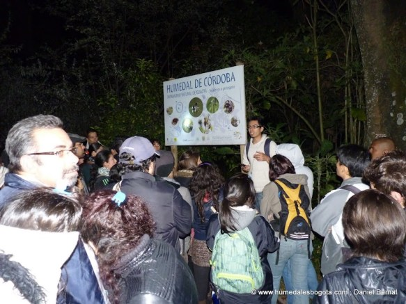 Recorrido Nocturno en el Humedal Córdoba