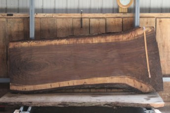 "532 Walnut -9  10/4 x  45"" x  33"" Wide x 8' Long"