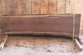 "515 Walnut -4 8/4  x  28"" x  22"" Wide x 8' Long"