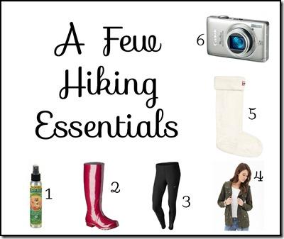 A few hiking Essentials