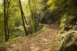 Trail Lago d'Orta 2012 - Arola2