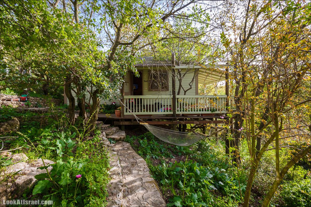 Райский домик затерянный в горах и дремучих лесах