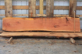 Cherry 308-6  Length 10', Max Width (inches) 23 Min Width (inches) 19 Thickness 10/4  Notes :