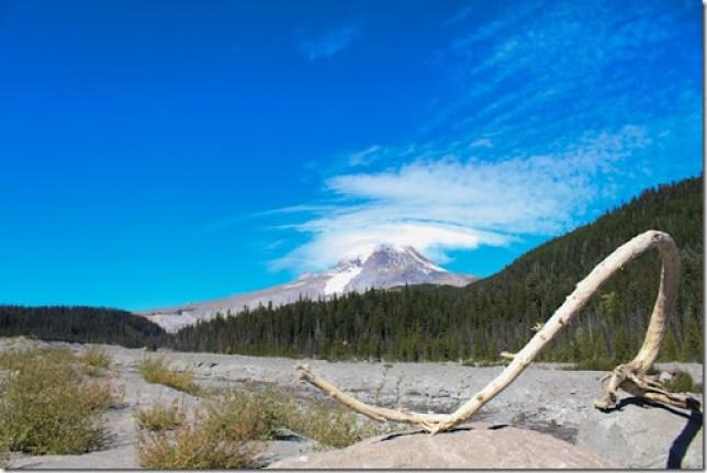 Domesticability Oregon Trip Mt. St Helens Haystack Rock Tidepools_-171