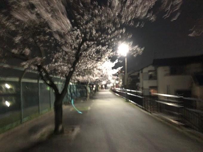 2018-03-28 22.44.59.jpg