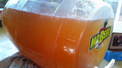 how to make hard cider from store bought cider