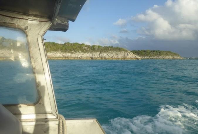 Dingy/Tender | Caribbean Sealife