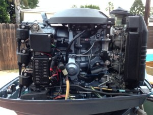 perich brothers (and sister): Whaler Resto pt xv  yamaha 90