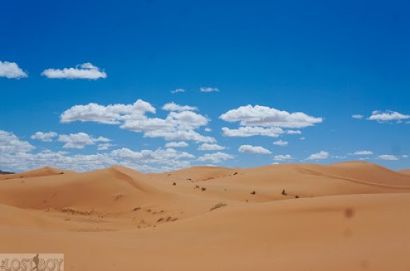 sahara desert-10