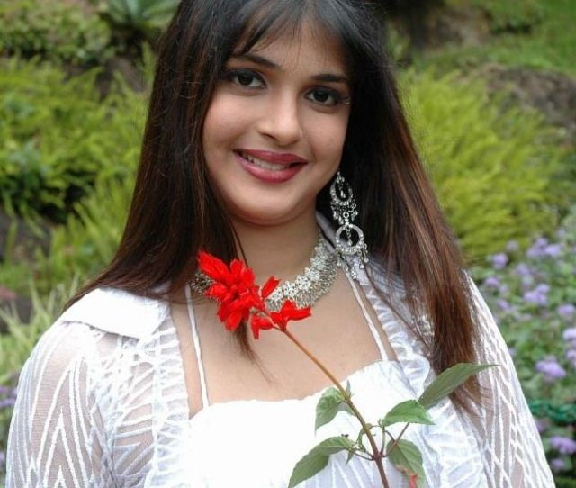 Tuditaseuescrevo Nicole Tamil Actress New And Old Pics Collection Photo Gallery Wallpapers