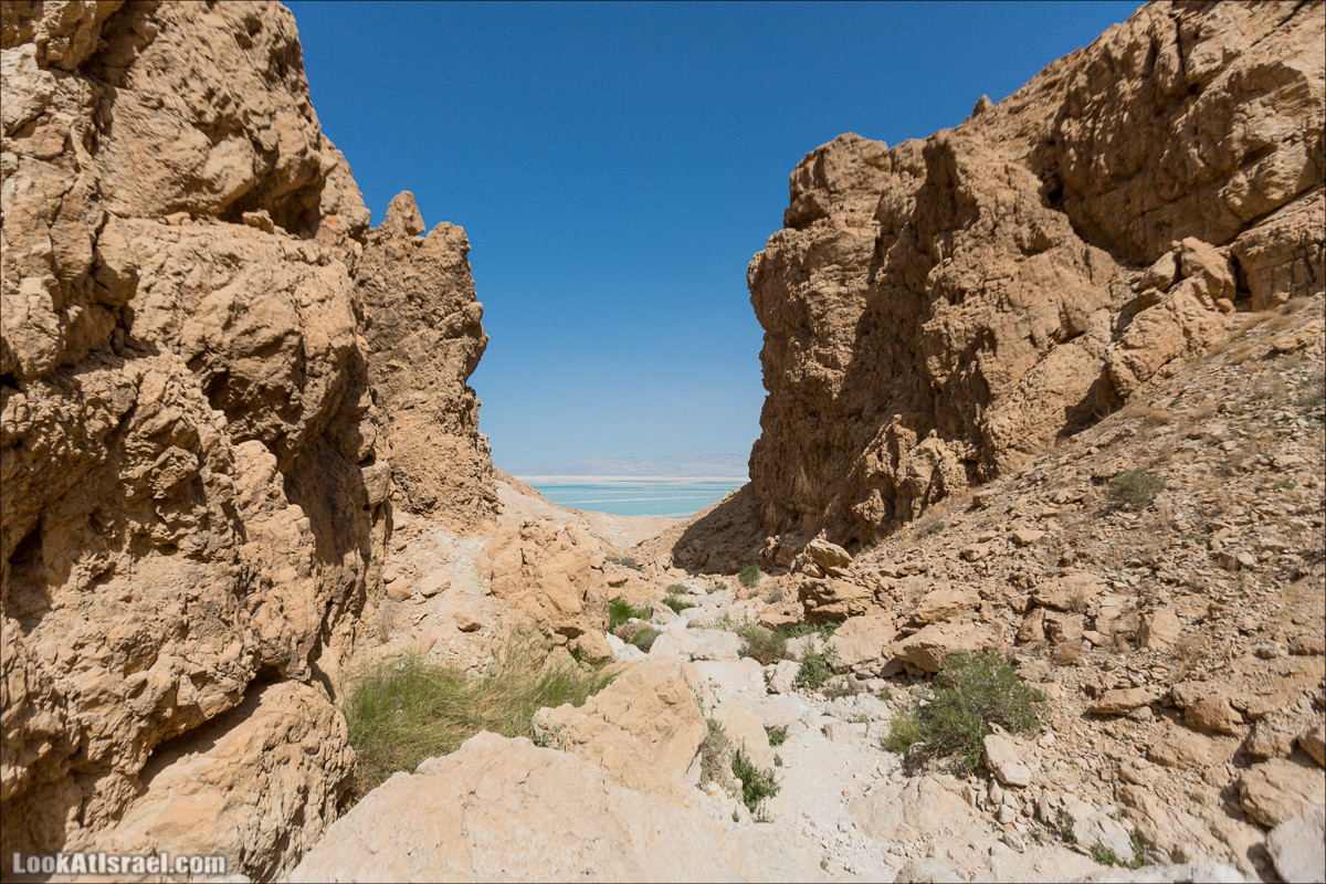 Израильский Рашмор, самый низкий в мире мост, три ручья и одна крепость