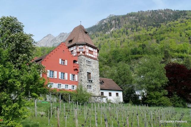 Vaduz (Le petit requin)