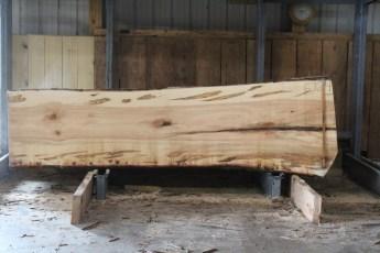 "576  Ambrosia Maple -4 10/4x 38"" x 30"" Wide x  10'  Long"