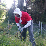 IVLP 2010 - Volunteer Work at Presidio Trust - 100_1404.JPG