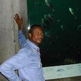 Montery Bay Aquarium, USA - 207779486_6b4eff511f.jpg