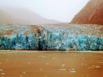 Endicot Arm - Dawes Glacier -  8-17-2009 5-01-11 PM.JPG