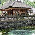 0549_Indonesien_Limberg.JPG