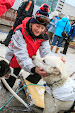 Iditarod2015_0109.JPG