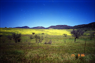 0074Flinders Ranges