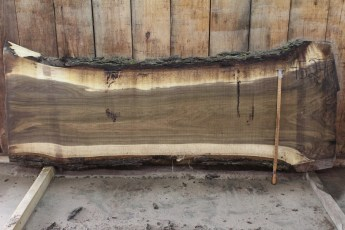 "452 Walnut -10 2 1/2"" x 38"" x 27"" Wide x 8' Long"