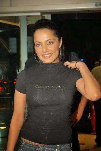 Celina Jaitly Photos