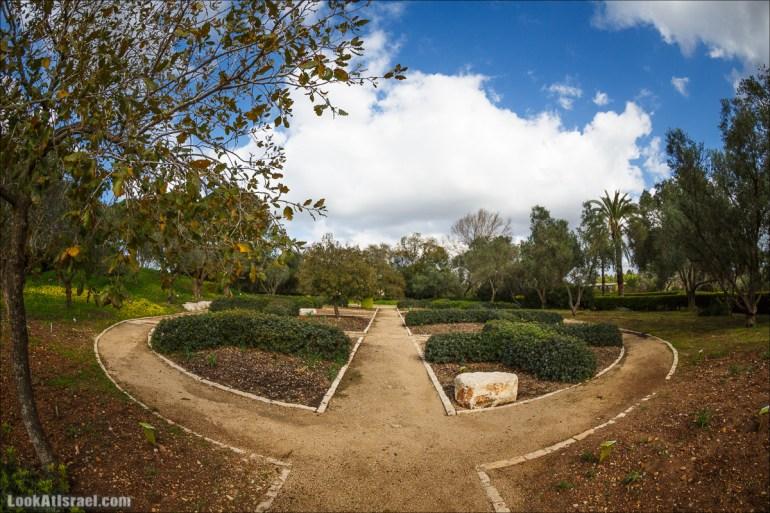 Рамат ха-Надив - Сады Ротшильда | Ramat ha-Nadiv - Rothschild Gardens | רמת הנדיב - גני רוטשילדLookAtIsrael.com - Фото путешествия по Израилю