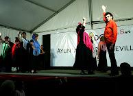 DistritoSur_2008MayoBaja72.jpg
