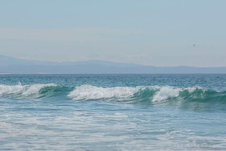 Moss Landing State Beach / Moss Landing, California
