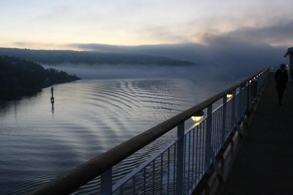 Gespenstische Stimmung im Nebel