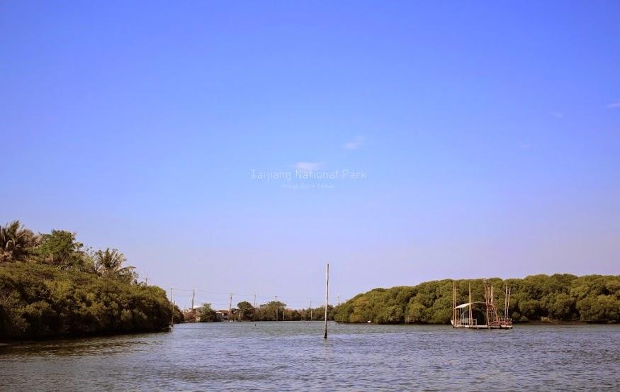 台江四草湖生態之旅-6