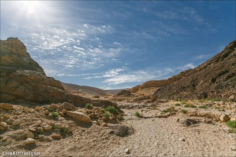 Ущелье Шхорет | Canyon Shchoret | קניון שחורת | LookAtIsrael.com - Фото путешествия по Израилю