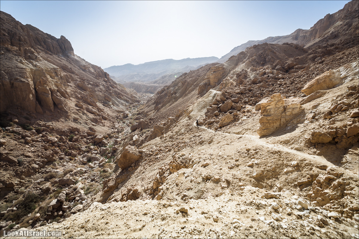 Нахаль Цофит - геологический рай   Nahal Zofit   נחל צופית   LookAtIsrael.com - Фото путешествия по Израилю
