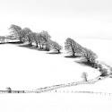 Advanced 2nd - The Frozen North_Sarah Walker.jpg