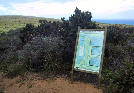 Cape to Cape Track Trailhead