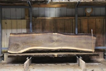 "603  Walnut - 8 10/4 x 27"" x 20"" Wide x  10'  Long"