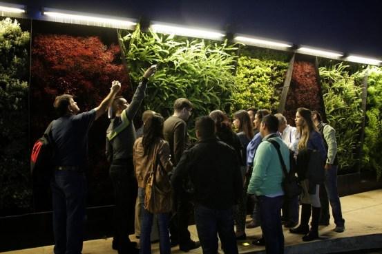Cursos de jardines verticales de Guadalajara México