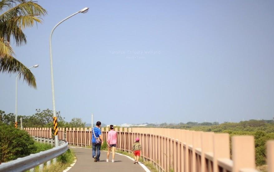 台南安平鹽水溪河口溼地-7